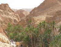 Chebika to przepi�kna oaza g�rska w Tunezji.